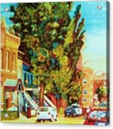 Autumn On Bagg Street Acrylic Print