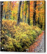 Autumn On Long Pond Road Acrylic Print