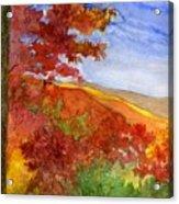 Autumn On The Cherohala Skyway Acrylic Print
