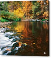 Autumn On The Merced River Yosemite Np Acrylic Print