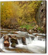 Autumn On The Provo River Acrylic Print