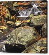 Autumn On The Rocks Acrylic Print