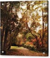 Autumn Passage II Acrylic Print