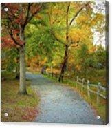 Autumn Path II Acrylic Print