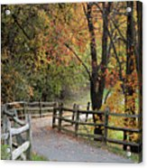Autumn Path In Park In Maryland Acrylic Print