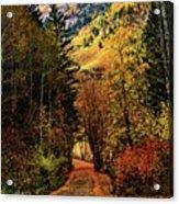 Autumn Path To Stewart Falls Acrylic Print