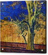 Autumn Pecan Acrylic Print