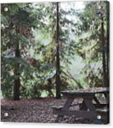 Autumn Picnic In The Woods  Acrylic Print