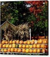 Autumn Pumpkins And Cornstalks Graphic Effect Acrylic Print