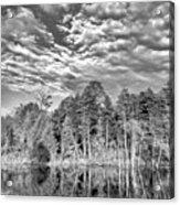 Autumn Reflection 2 Bw Acrylic Print