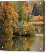 Autumn Reflection 41 Acrylic Print