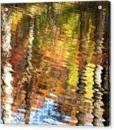 Autumn Reflections-3 Acrylic Print