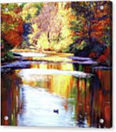 Autumn Reflections Acrylic Print by David Lloyd Glover
