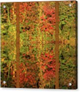 Autumn Reflections In A Window Acrylic Print