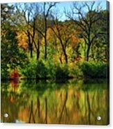 Autumn Reflections On Salt Creek IIi Acrylic Print