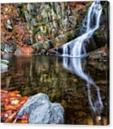 Autumn Refletions Acrylic Print