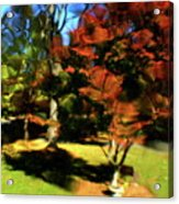 Autumn Refraction Acrylic Print