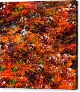 Autumn Riot Acrylic Print