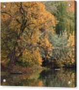 Autumn Riverbank Acrylic Print