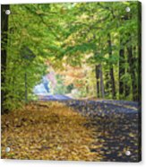 Autumn Road 2 Acrylic Print
