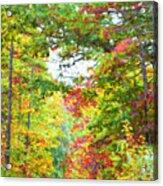 Autumn Road - Digital Paint Acrylic Print