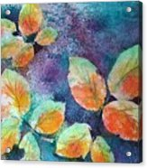 Autumn Rose Leaves Acrylic Print