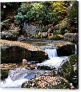 Autumn Rushing Mountain Stream Acrylic Print by Thomas R Fletcher