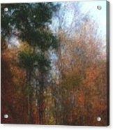 Autumn Scene 10-23-09 Acrylic Print