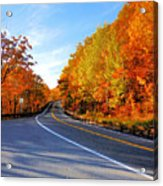 Autumn Scene With Road In Forest 2 Acrylic Print