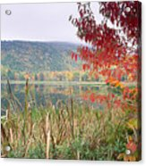Autumn Scenic Acadia National Park Maine Acrylic Print by George Oze