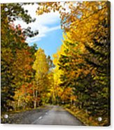 Autumn Scenic Drive Acrylic Print by George Oze