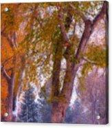 Autumn Snow Park Bench Peace Acrylic Print