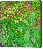 Autumn Splender Acrylic Print