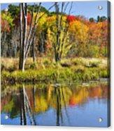 Autumn Splendor - Bolton Flats Acrylic Print