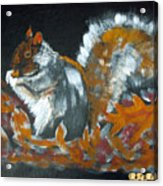Autumn Squirrel Acrylic Print