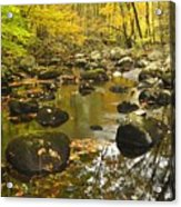 Autumn Stream Reflections Acrylic Print