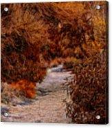 Autumn Stroll No23 Acrylic Print