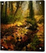Autumn Sunrays Acrylic Print