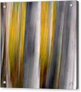 Autumn Timber Acrylic Print