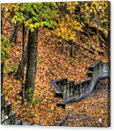 Autumn Trail - Rockyriver Metroparks Acrylic Print