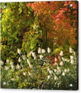 Autumn Tranquility 3 Acrylic Print
