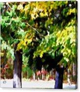Autumn Trees 7 Acrylic Print