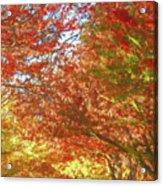 Autumn Trees Digital Watercolor Acrylic Print