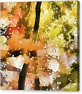 Autumn Trees In The Fog Acrylic Print
