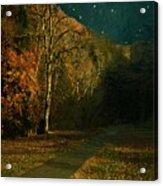 Autumn Tunnel Acrylic Print