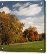 Autumn Under The Sky Acrylic Print