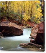 Autumn Virgin River In Zion Acrylic Print