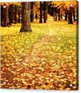 Autumn Walk In Spokane Acrylic Print
