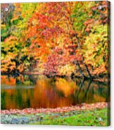 Autumn Warmth Acrylic Print