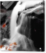 Autumn Waterfall Iv Acrylic Print